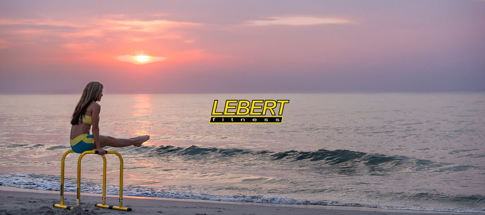 Click image to get your Lebert Equalizers!