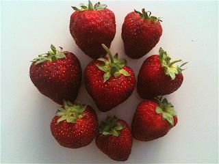 MFStrawberries.png