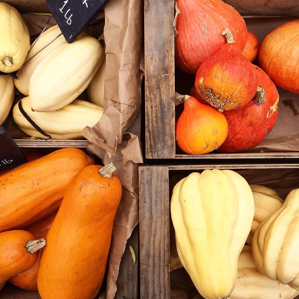Assortment of squashes from La Tercera Farm at the Berkeley Farmers Market