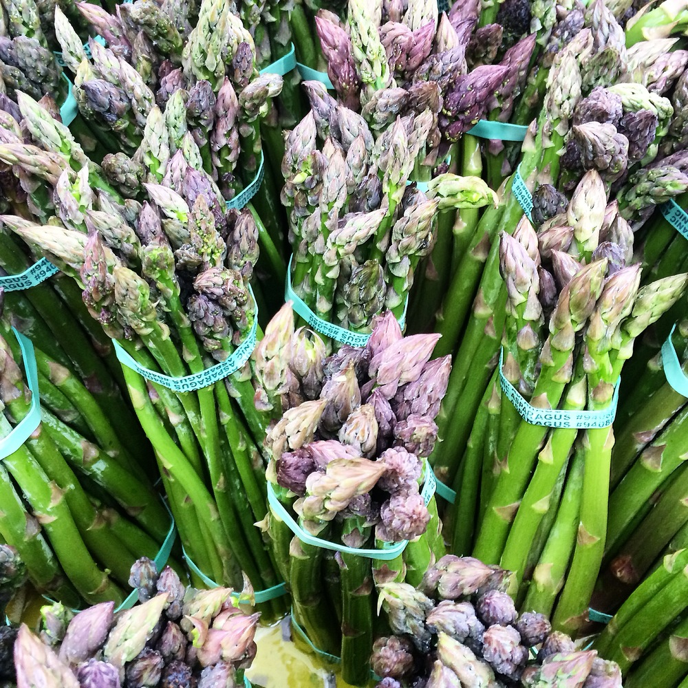 Fresh asparagus - Berkeley Farmers Market, Riverdog Farm.