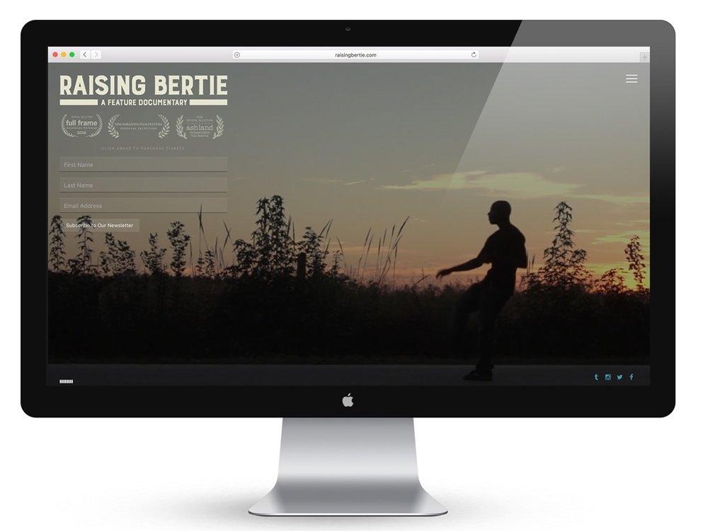 Designed & built WordPress website