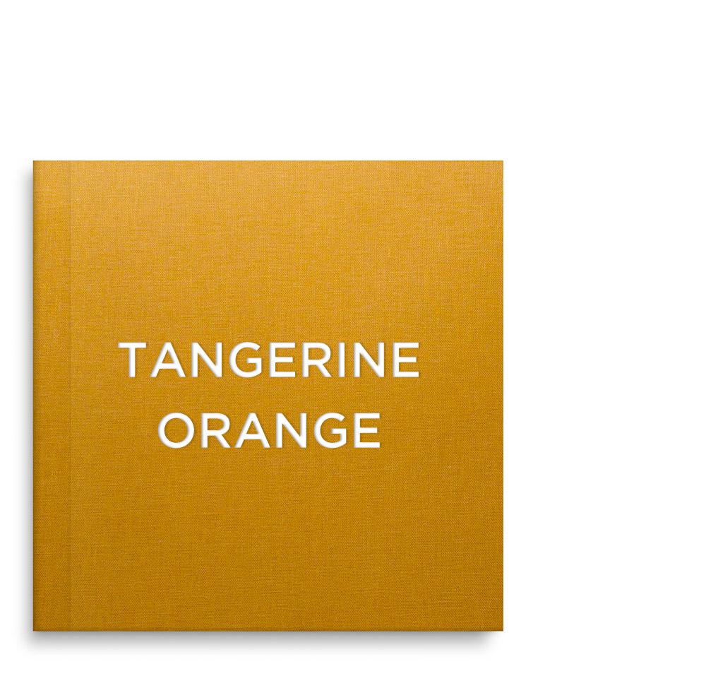 TOrange_01.jpg