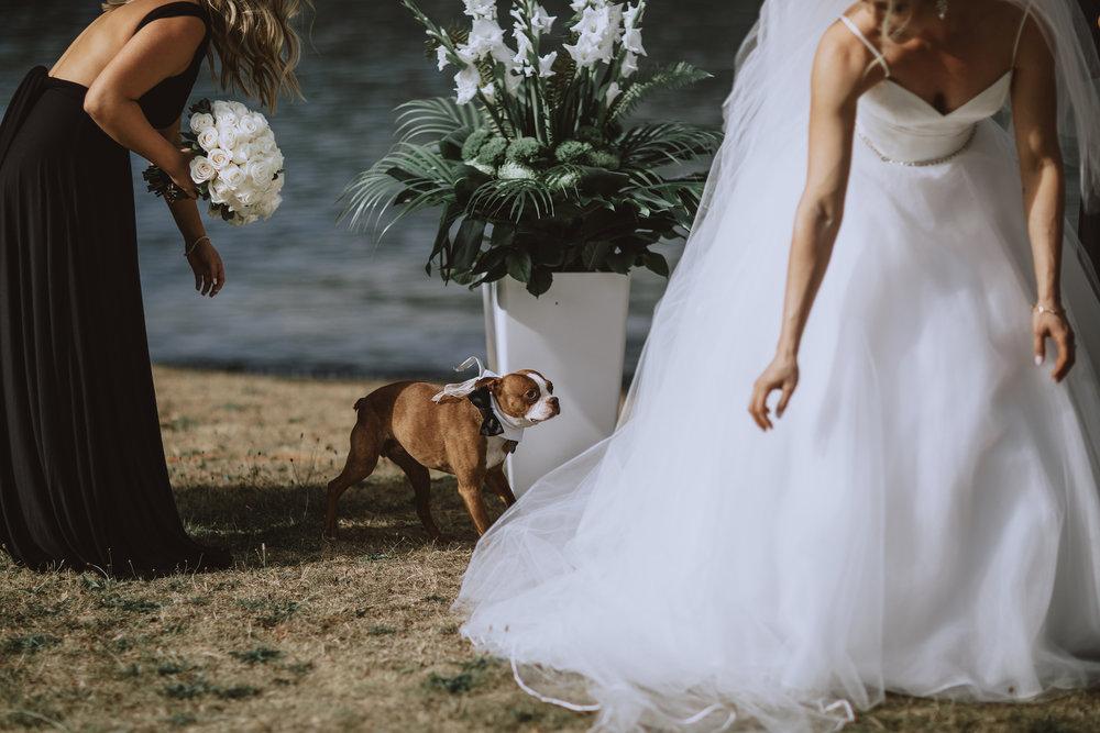 Bowen-Island-wedding-Bowen-Island-Lodge-vancouver-island-wedding-photographer-17.jpg