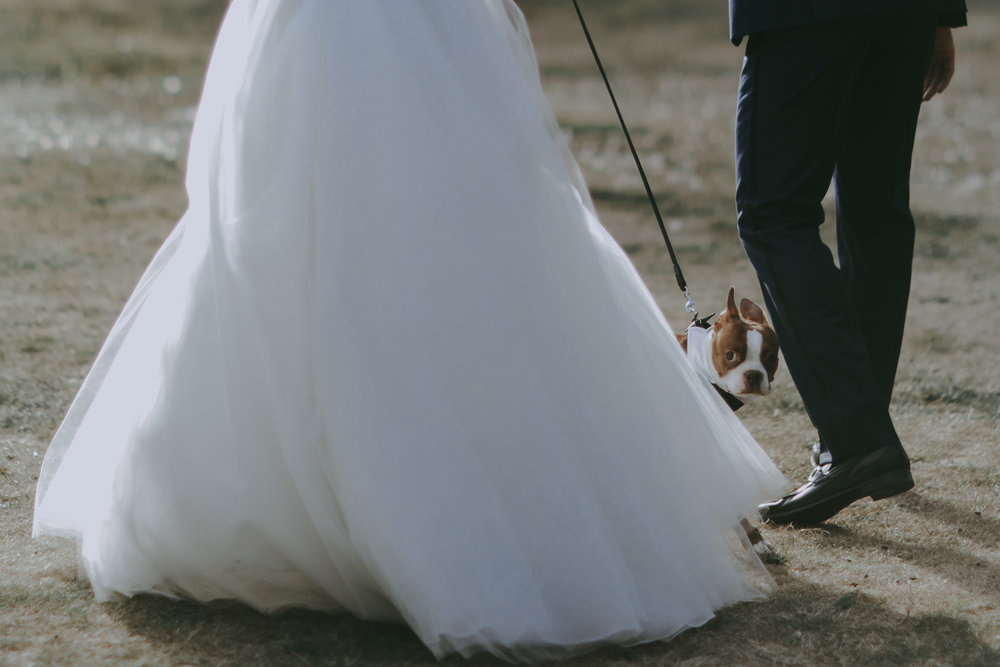 Bowen-Island-wedding-Bowen-Island-Lodge-vancouver-island-wedding-photographer-29.jpg