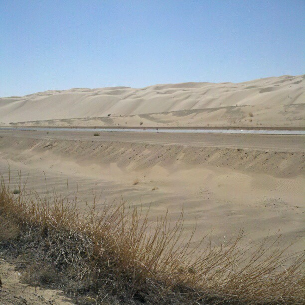 Dunes #desert #sanddunes (Taken with  Instagram )