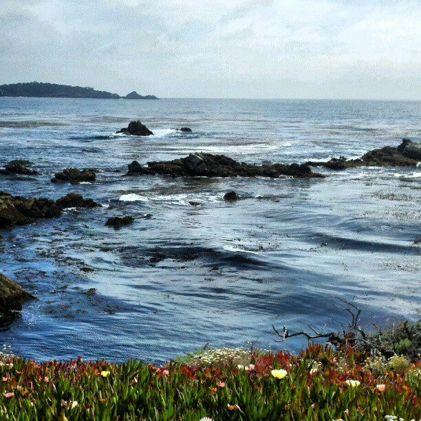 Carmel #ocean (Taken with instagram)
