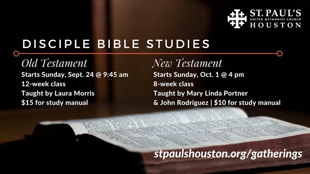 16x9 Disciple Bible Studies.jpg