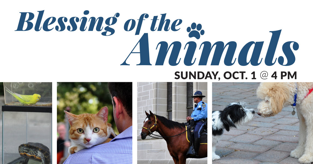 chimes-blessing-of-the-animals-2017.jpg