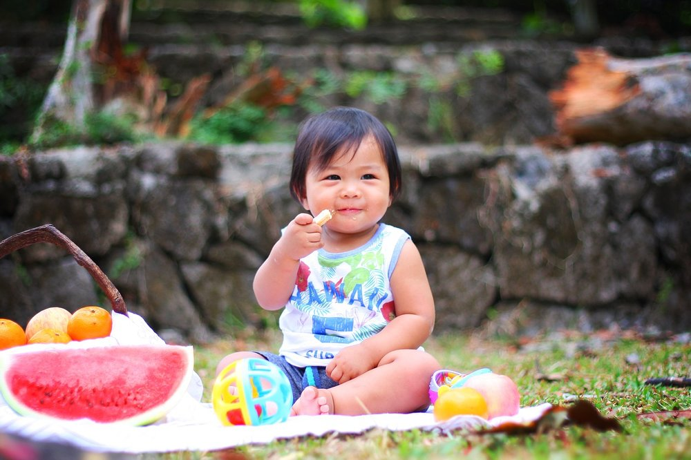 Happy-Baby-Food-Cute-Picnic-Eating-Child-Toddler-2659208.jpg