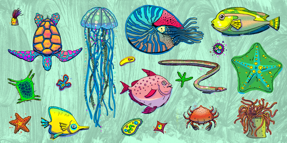 Jellyfish _BG_FriendlyIsland_website3.jpg