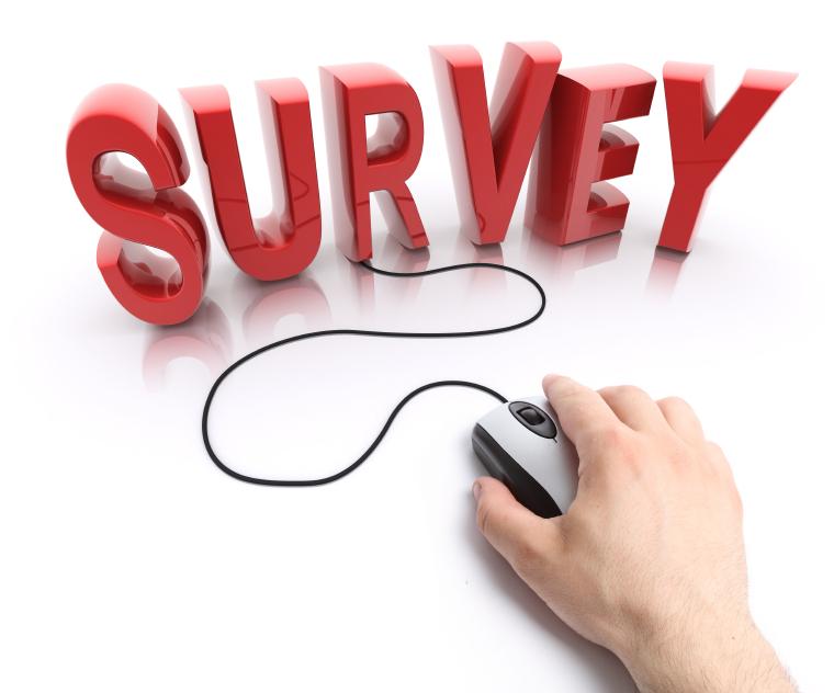 Survey-Online.jpg