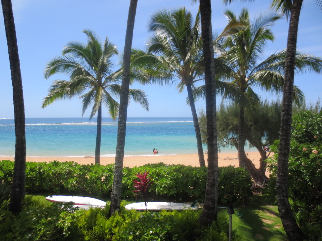 What a view from the terrace - truly Kauai magic