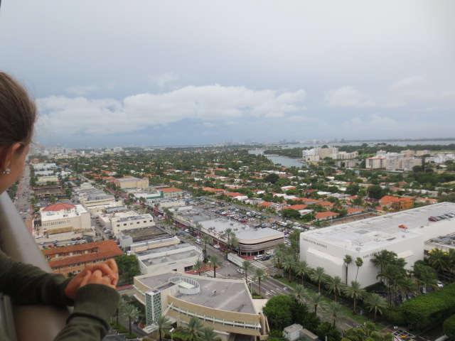 View over Miami from the Felton/Kall residence