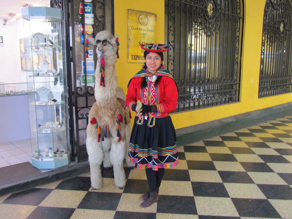The first Lama that we saw in Peru was not a real one