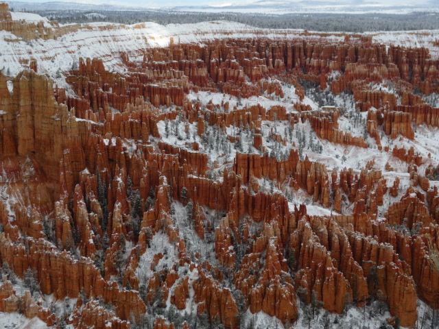 We believe that the snow that had fallen during the night made the canyon look even more spectacular