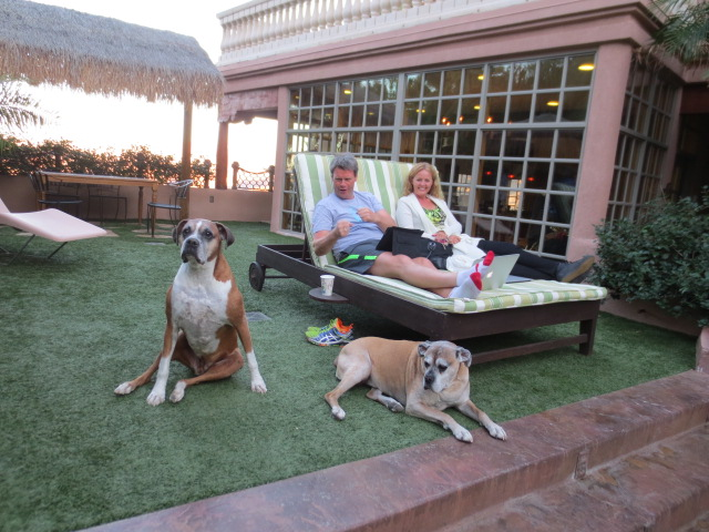 Benni and Gudrun relaxing at the pool with Craig´s two dogs.  They are getting pretty old but are just so nice.