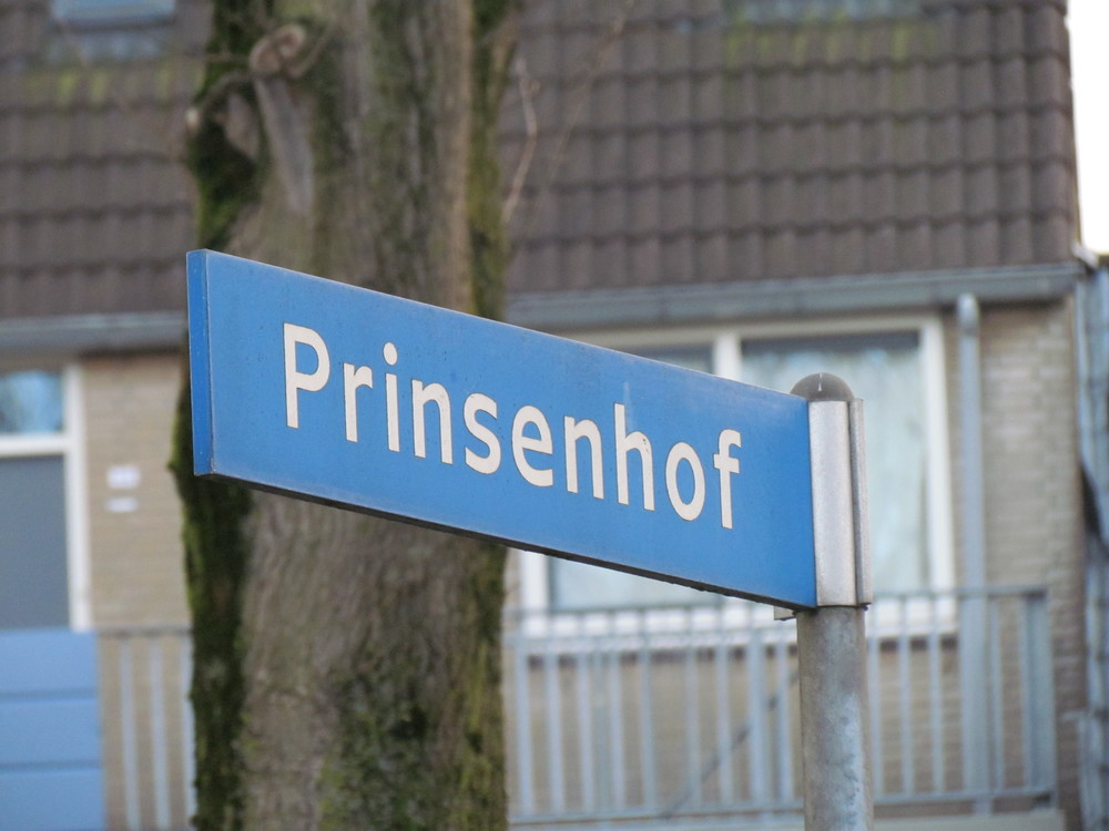 Our old street in Capelle aan den Ijssel