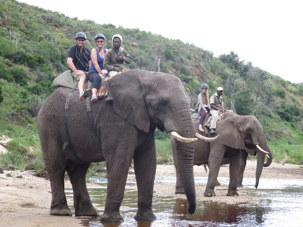 We had a wonderful time riding the Elephants