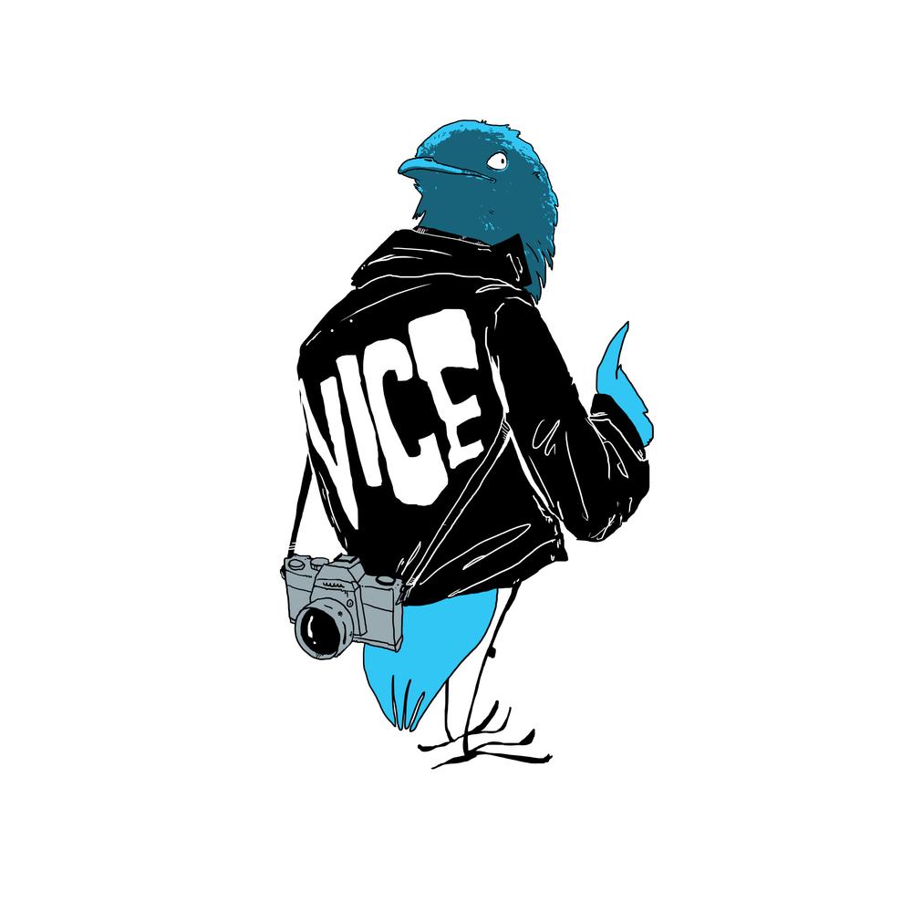 12-vice.jpg
