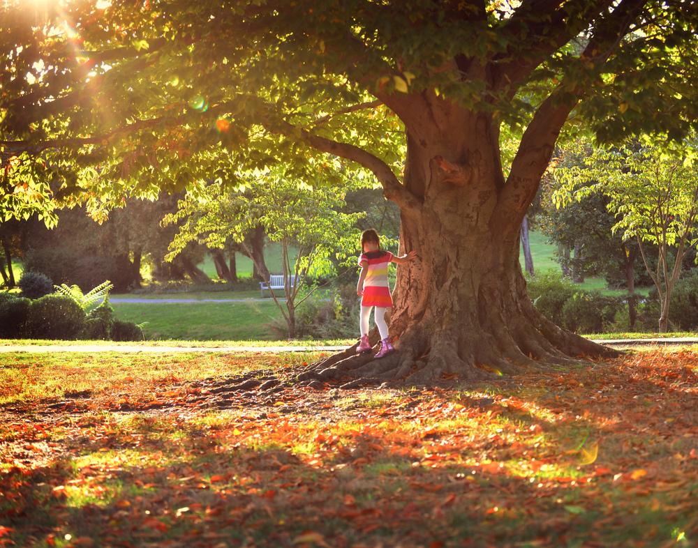 DSC_5574 emma walking around tree with roots 11x14.jpg
