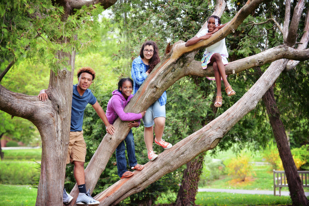 DSC_9072 kids in tree 3 website.jpg