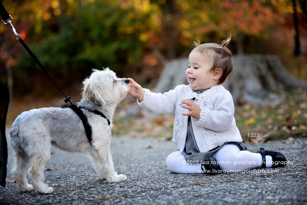 DSC_1523 thea pet dog wm.jpg