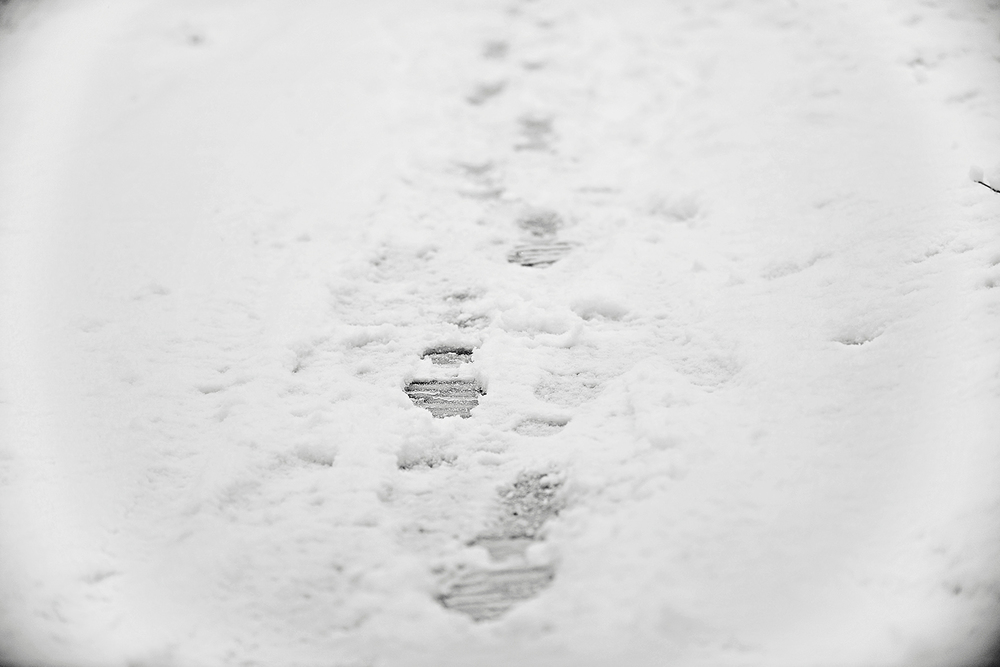 DSC_9925 footsteps in snow for website.jpg