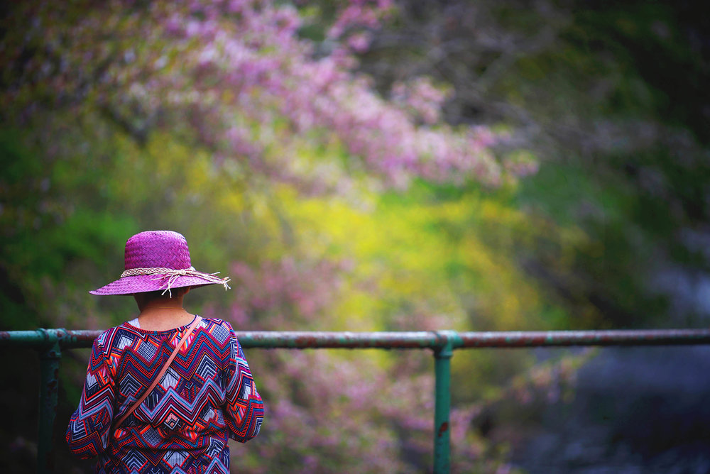 DSC_8037 cherry blossom pink hat web.jpg