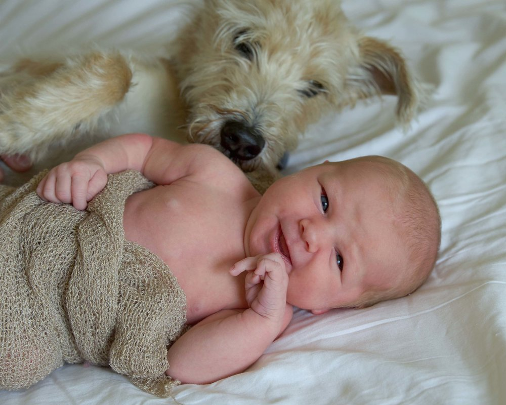 DSC_6366 baby smiles and pup web gallery.jpg