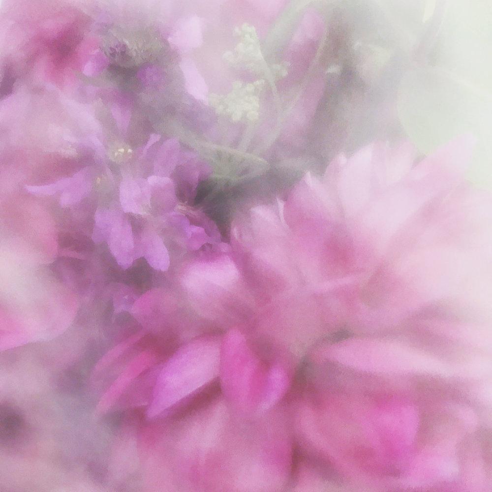 IMG_9754 flower.jpg