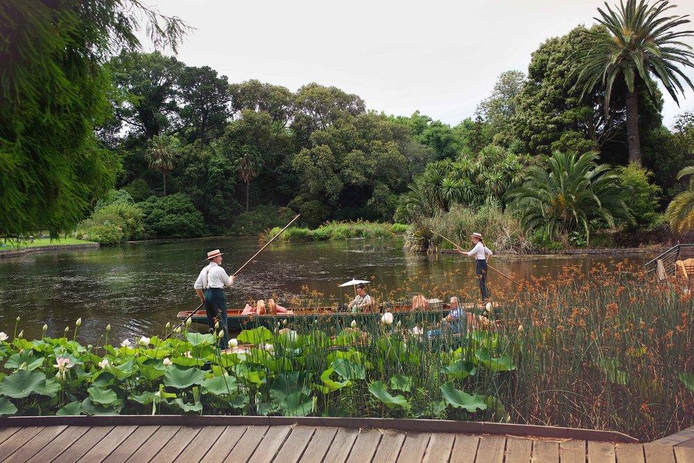 DSC_2235 melbourne botanical gardens.jpg