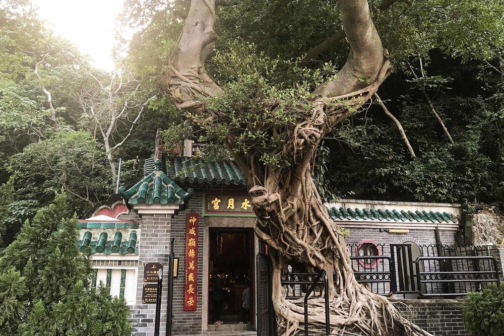 IMG_8889 HK temple gallery.jpg