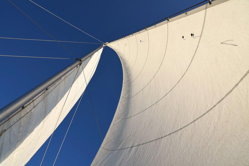 DSC_2682 sails gallery.jpg