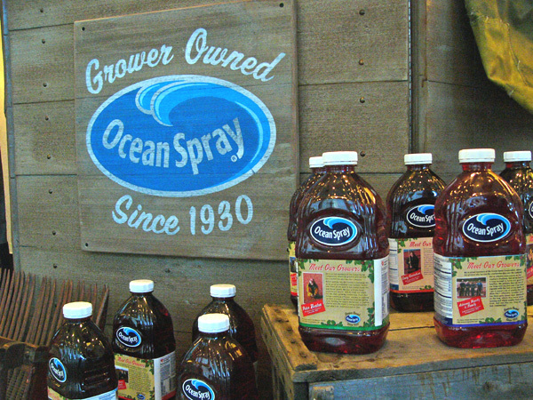 Hand Painted Signs for Ocean Spray displays at the 2010 Winter Olympics