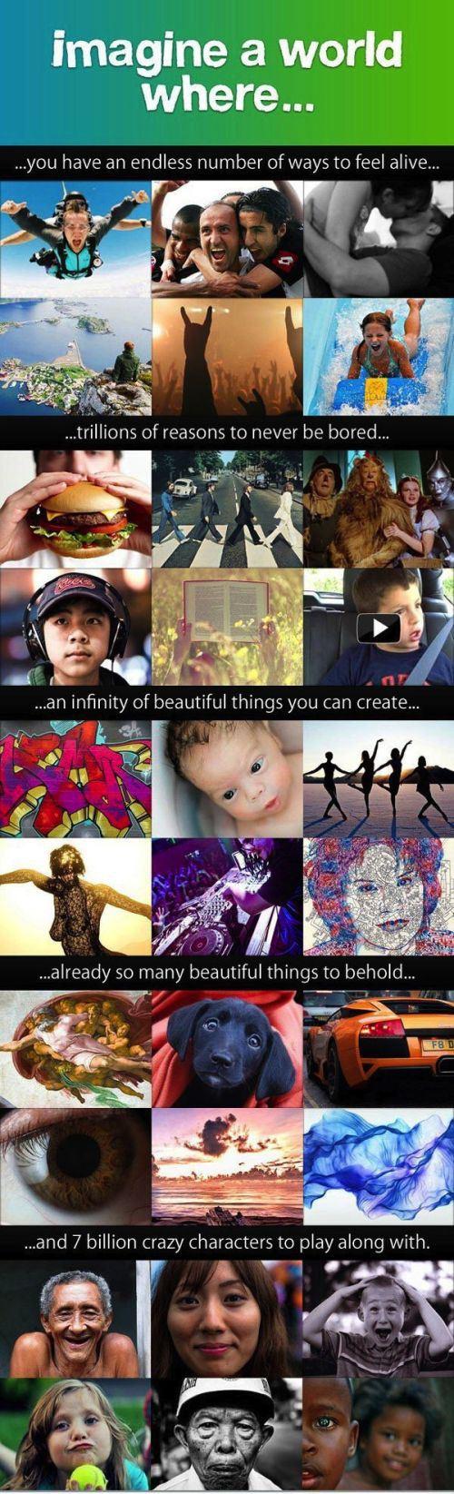 amazing-photos-311.jpg