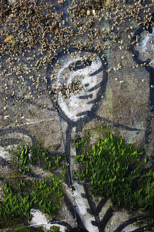 Les transformations poétiques d'un blockhaus. Tout cela à la Pointe du Cap-Ferret #Passion #CapFerret