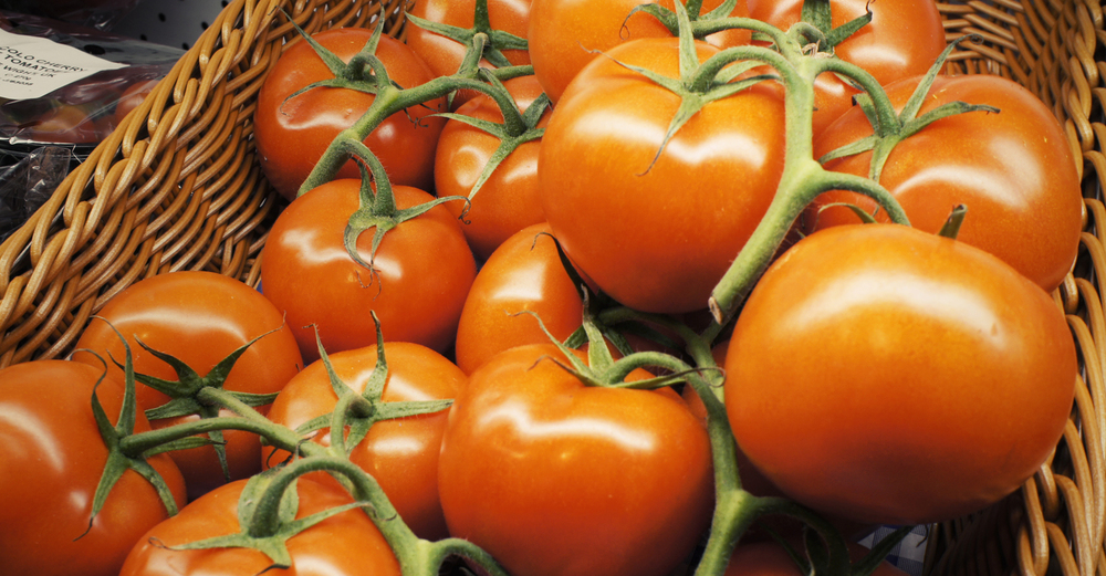 Locally grown delicious tomatoes