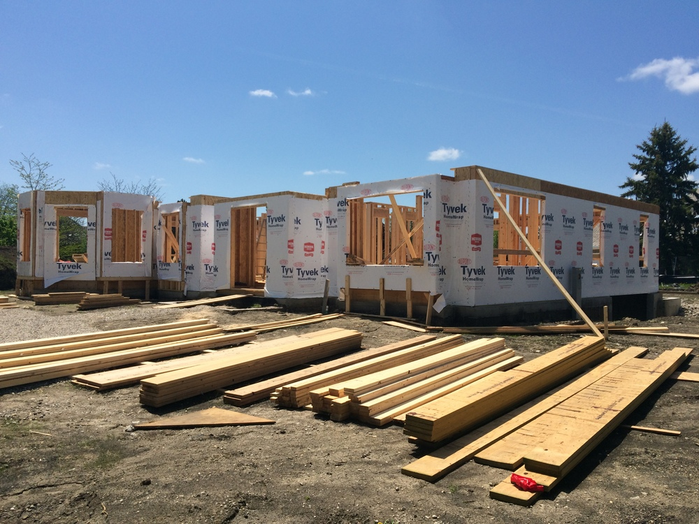 Hamilton - 1st Floor Framing — The Stonefield Group Inc