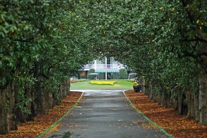 MAGNOLIA LANE //  Entrance into Augusta National