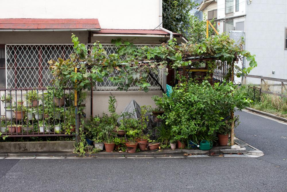 tokyo-4919.jpg
