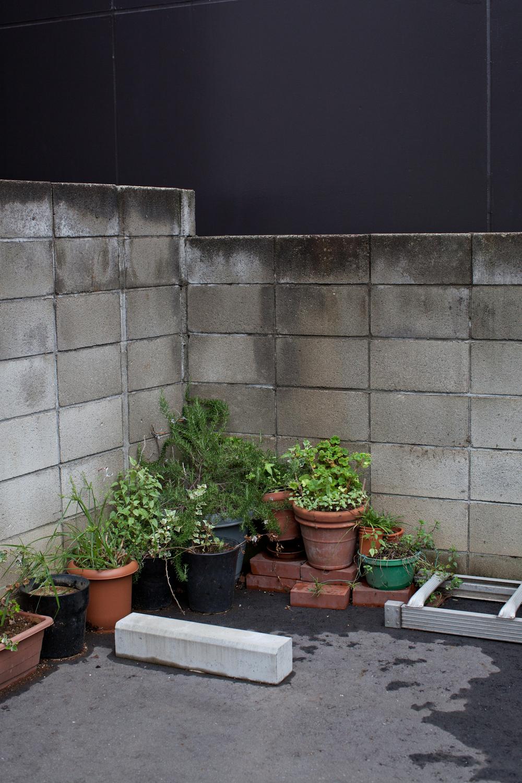 tokyo-4957.jpg