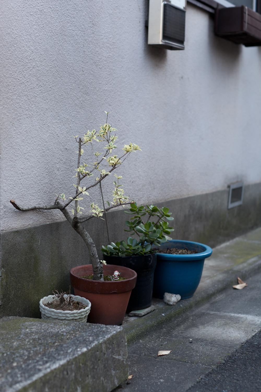 Tokyo-0212.jpg