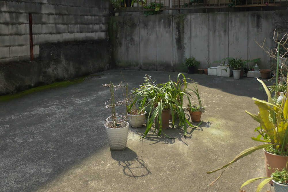 Tokyostreetgardens-1436.jpg