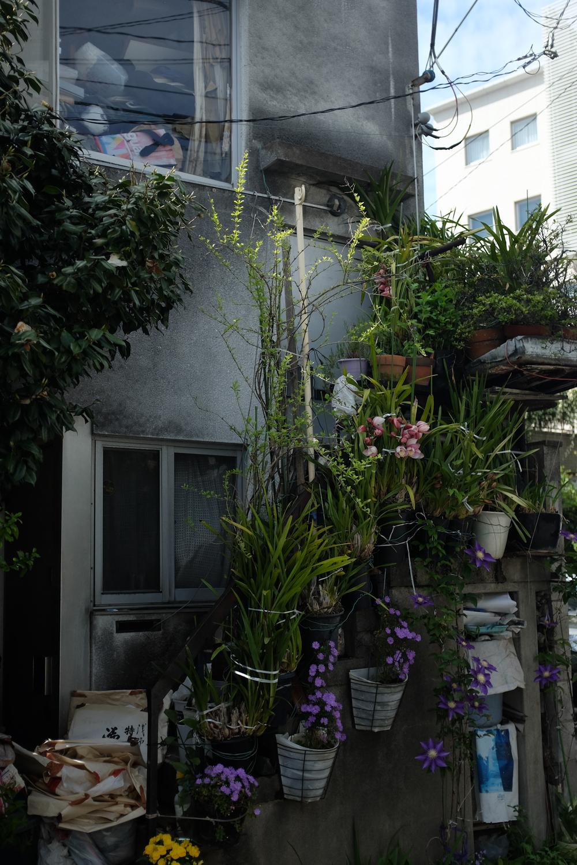 Tokyostreetgardens-3268.jpg