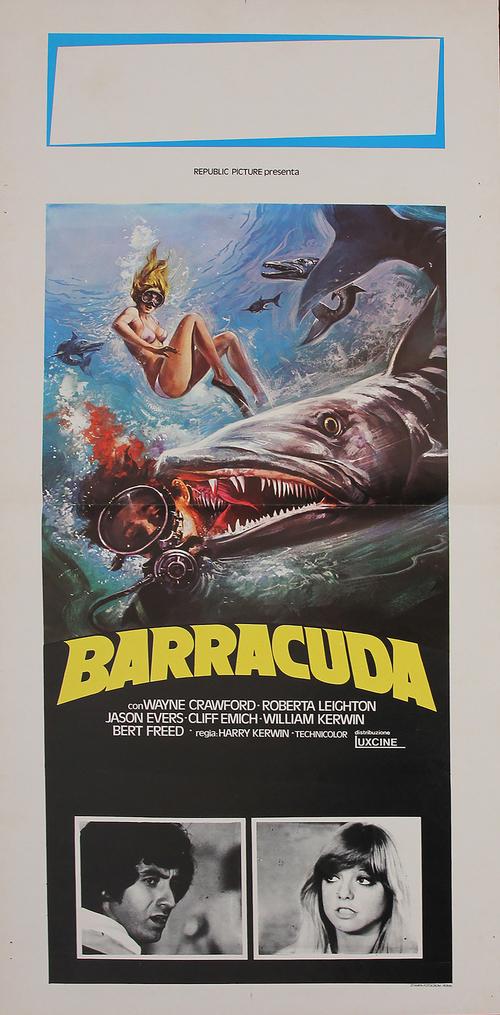 Barracuda - LOCANDINA