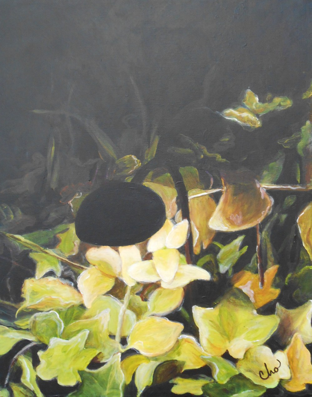 Light in a Dark Garden (No. 2)--April 2012