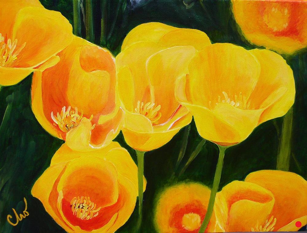 Poppies--12x16 2008