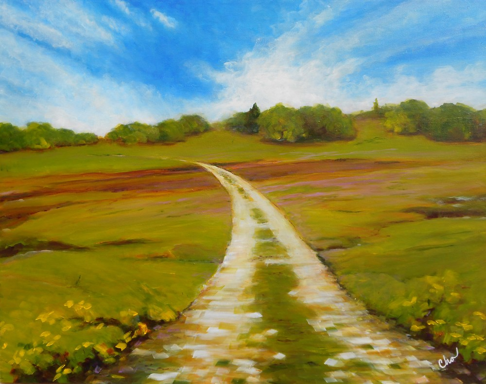 Field Under a Cloudy Sky--22x28 May2012-- $350