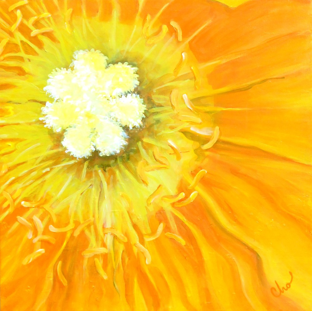 Yellow Poppy 20x20 June 2012.JPG