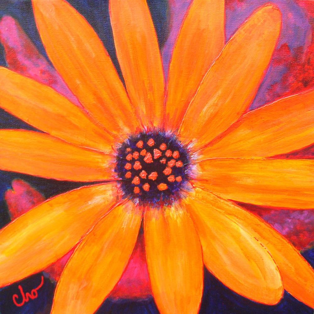 Orange Daisy 12x12 June09.jpg